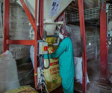 Fabrica de racao